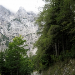 alpler-slovenya-27