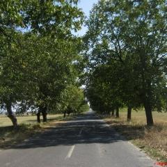 kardzhali-bulgaristan-17