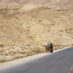 kral-yolu-wadi-mujib-21