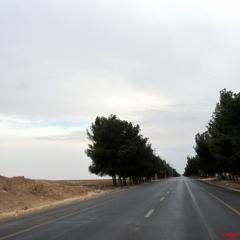 kral-yolu-wadi-mujib-31