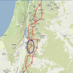 wadi-musa-harita