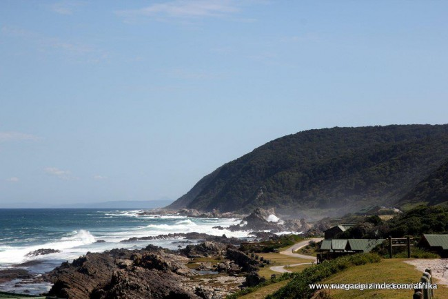 Güney Afrika, Tsitsikamma National Park