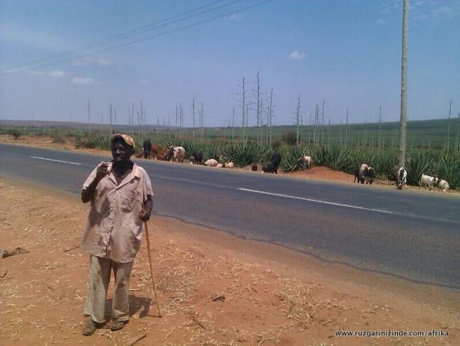 Tanzanya, Yol Kenarı